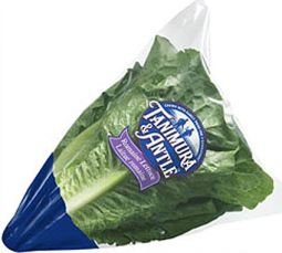 recalled romaine lettuce