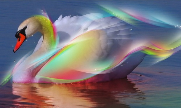 Happy Birthday Hd 3d Wallpaper Pink Mountains Rainbow Swans Grow With Mountains Support