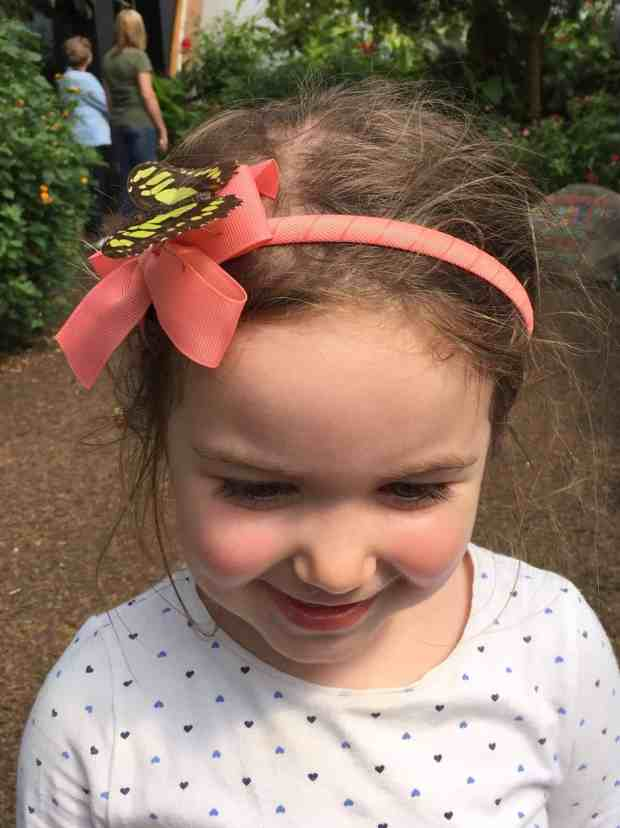 Thea with a butterfly on her head