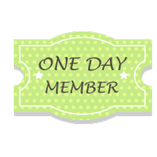 One Day Access Pass