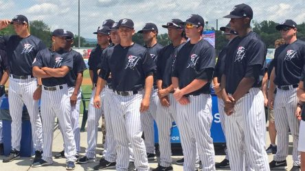 The Pulaski Yankees drew 1,677 per game in 2015. They return to Calfee Park Friday in the playoffs. (Pulaski Yankees)