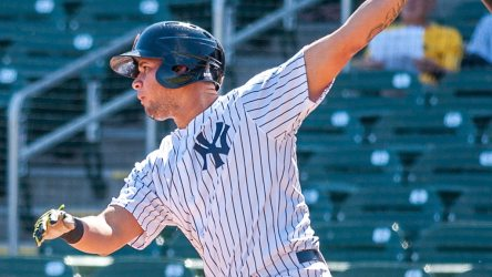 "Photographer Ryan ""Moose"" Morris has been hard at work in the Arizona Fall League and agreed to share his photos of the Yankees prospects out there with us. ( Ryan ""Moose"" Morris - Freelance Photographer)"