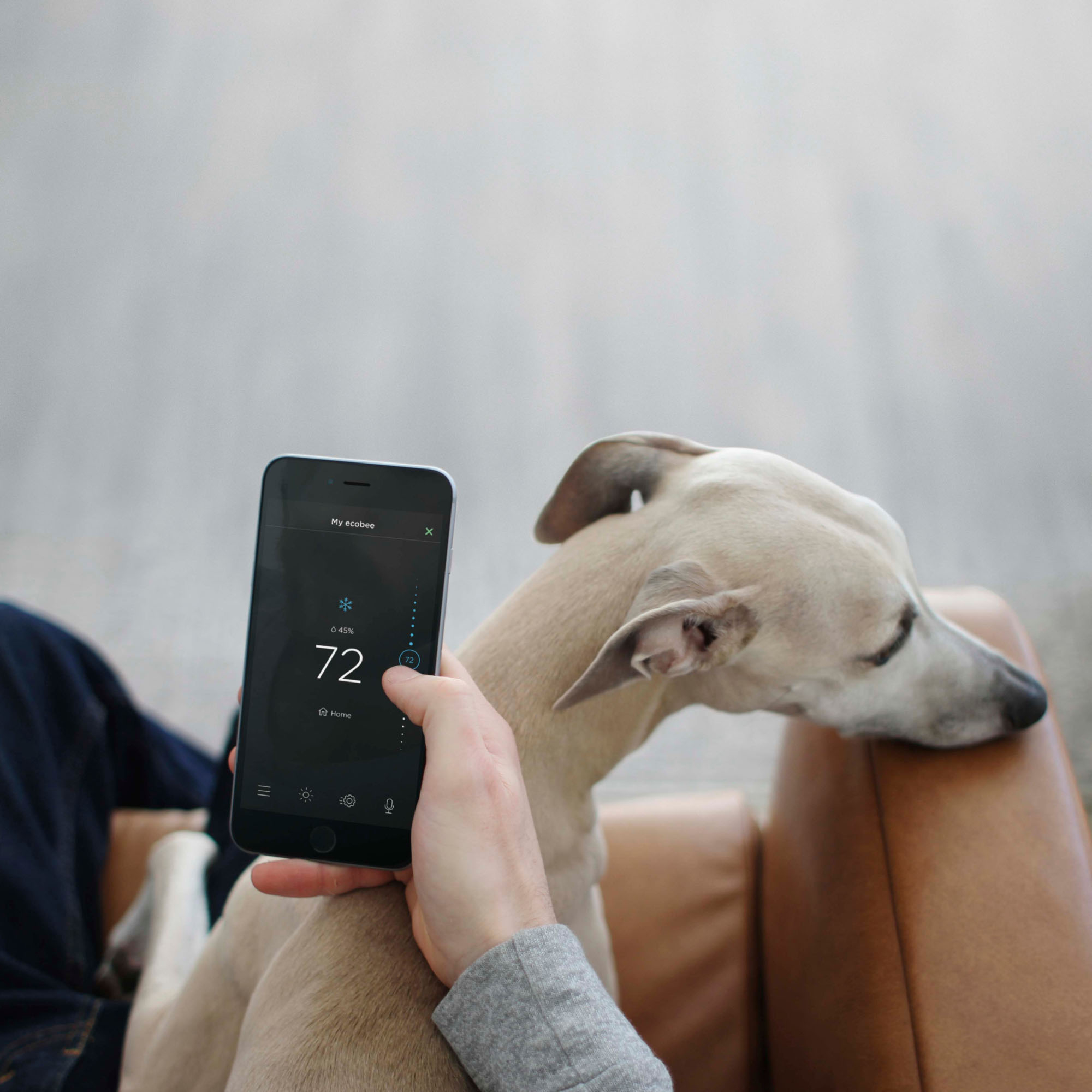Ecobee Sensor Ecobee Ecobee3 Lite Smart Thermostat Black