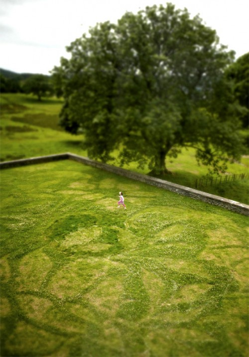 Cut Grass Art by Steve Messam