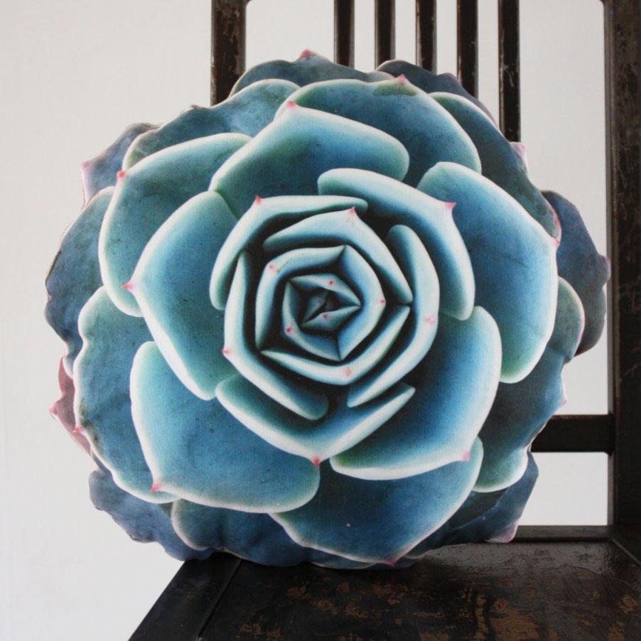 Succulent Cushions