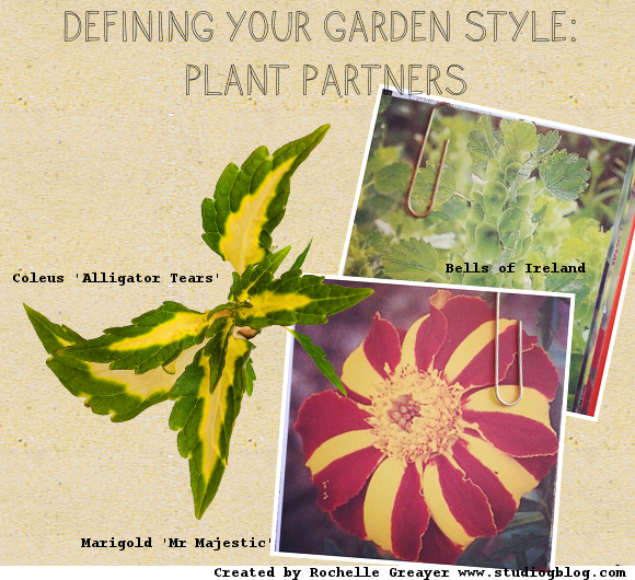Defining Your Garden Style – Plant Partners