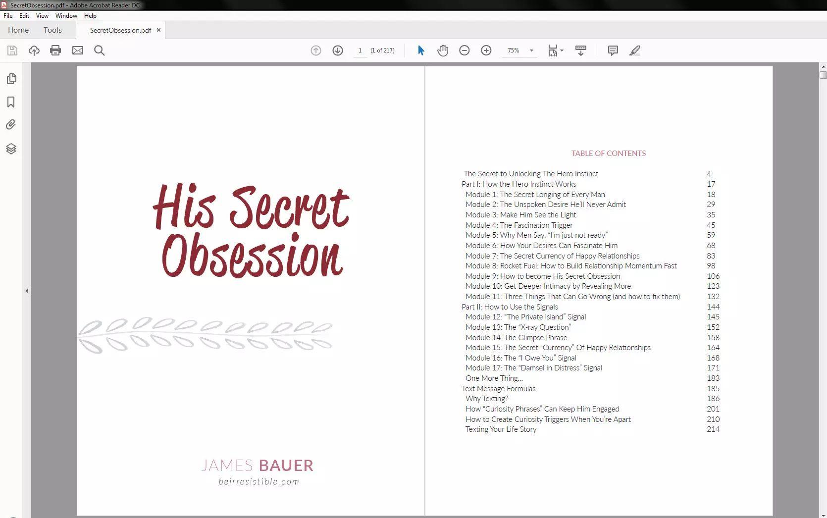 his secret obsession program pdf