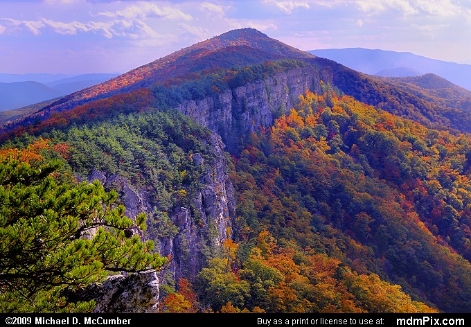 North Fork Mountain Picture 085 October 13 2009 From