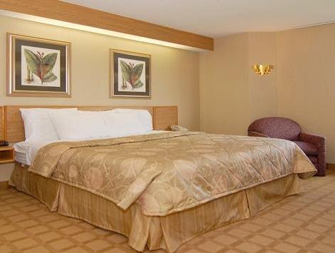 1 King Bed, Smoking Sleep Inn