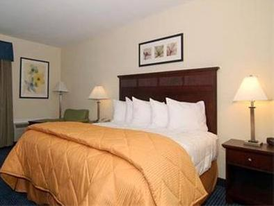 1 King Bed, Suite, Smoking Quality Inn and Suites Williamsburg Central