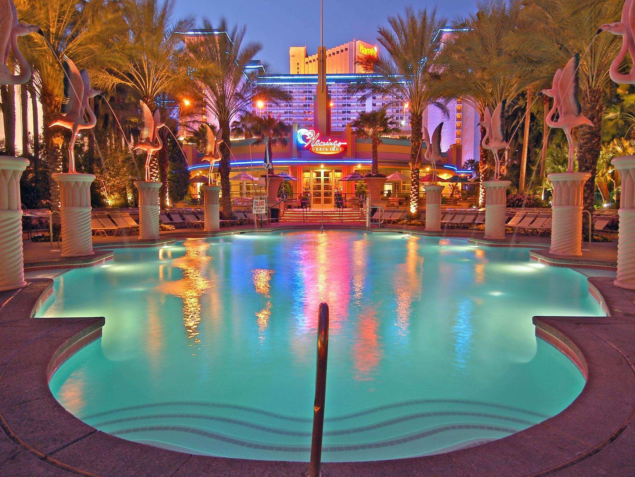 Flamingo Las Vegas Kid Pool Flamingo Hotel And Casino In Las Vegas Nv Room Deals