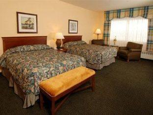 Best Western PLUS Landing Hotel Photo Picture Image 28539559