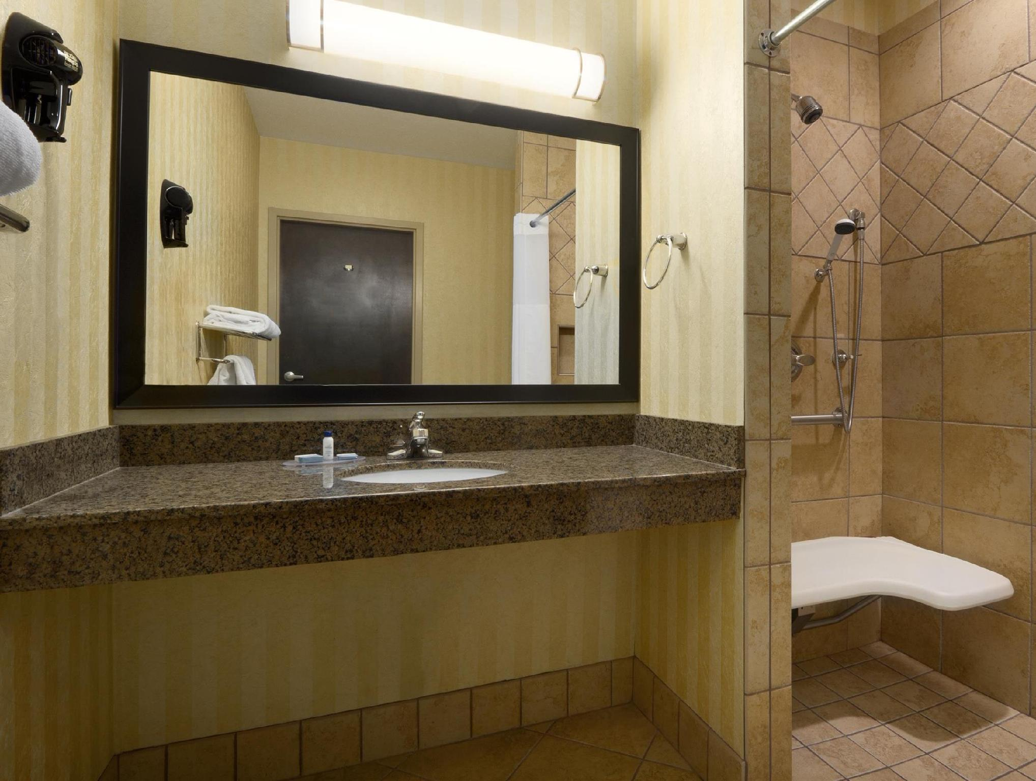 Roll In Shower 1 King Bed Best Western of Asheville Biltmore East