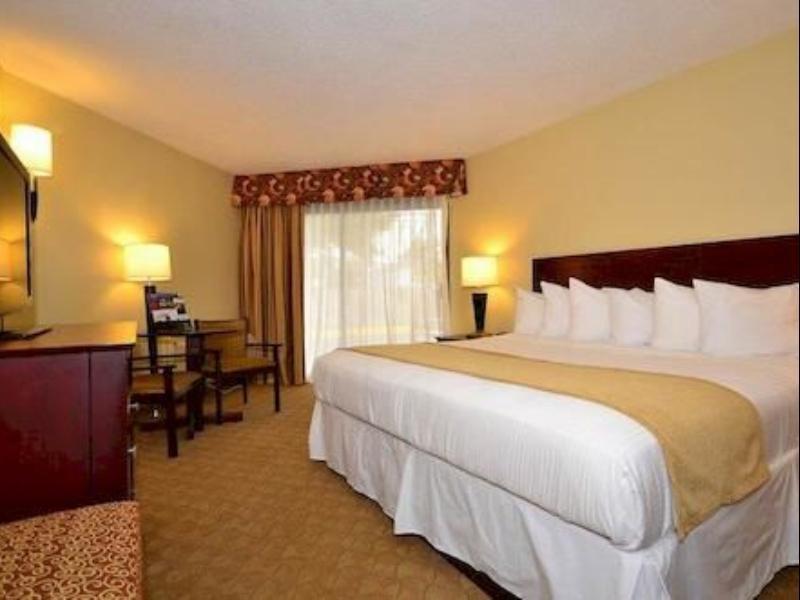 Roll In Shower 1 King Bed Best Western Oak Manor