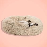 15 Best Dog Beds 2018: Foam, Suede, Shag, Cooling