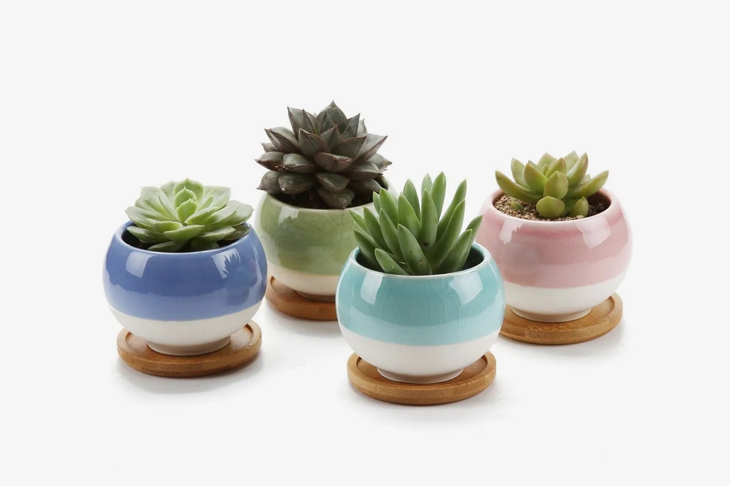 Outdoor Planters Near Me T4u Rachel S Choice 3 Inch Ball Shape Plant Pots With Bamboo Tray Set Of 4