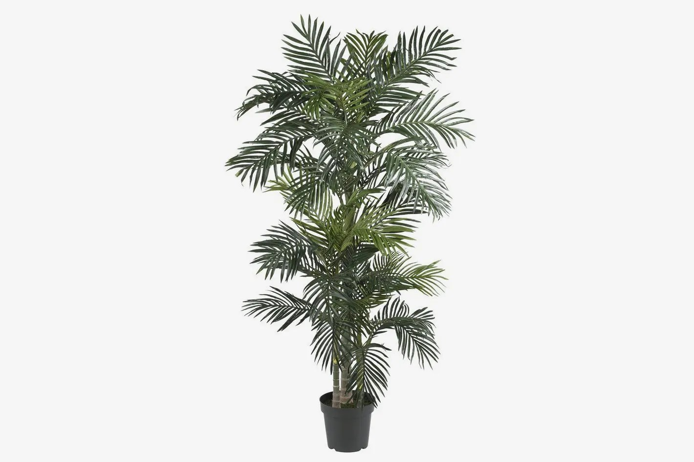 Ikea Palm Tree Nearly Natural Golden Cane Palm Silk Tree 6 5