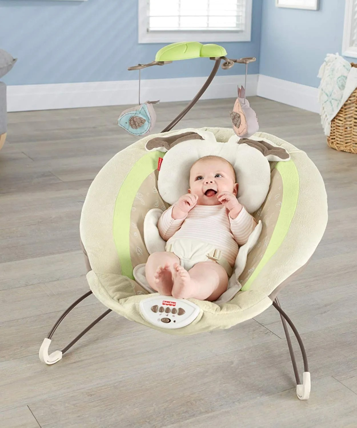 Bouncer Baby 9 Best Baby Bouncers According To Reviewers 2019