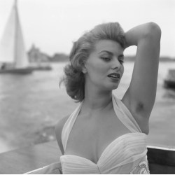Small Crop Of Sophia Loren Hot