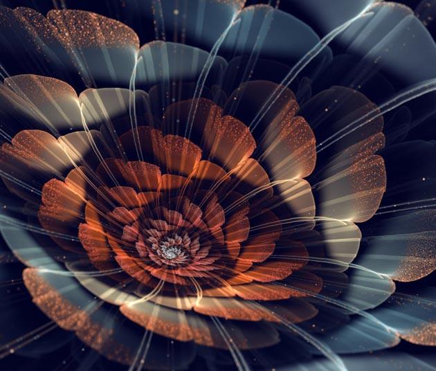 3d Fractal Wallpapers Hd Fraktalna Umjetnost Prelijepo Cvijeće By Silvia Cordedda
