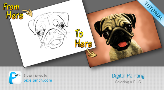 Folder 1 Digital Coloring Tutorial using Corel Painter & Tablet