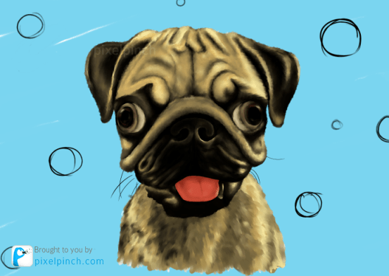 Step 14 Digital Art Dog Pug PixelPinch Digital Coloring Tutorial using Corel Painter & Tablet