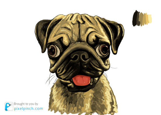 Step 8 Digital Art Dog Pug PixelPinch