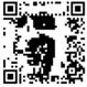 zoom2webdesigner