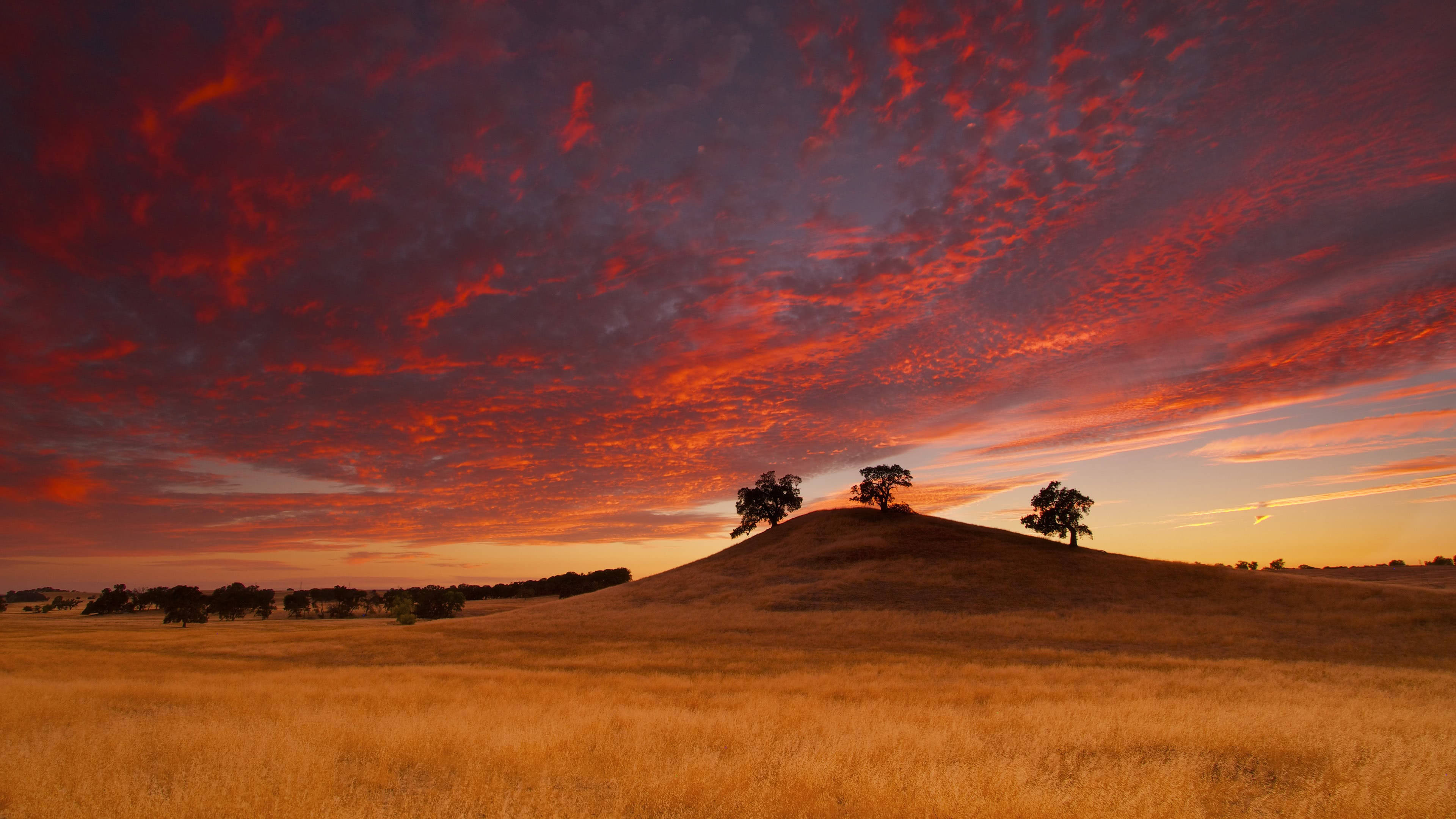 Cars Photos Hd Wallpaper Rancho Murieta Sacramento County California Uhd 4k