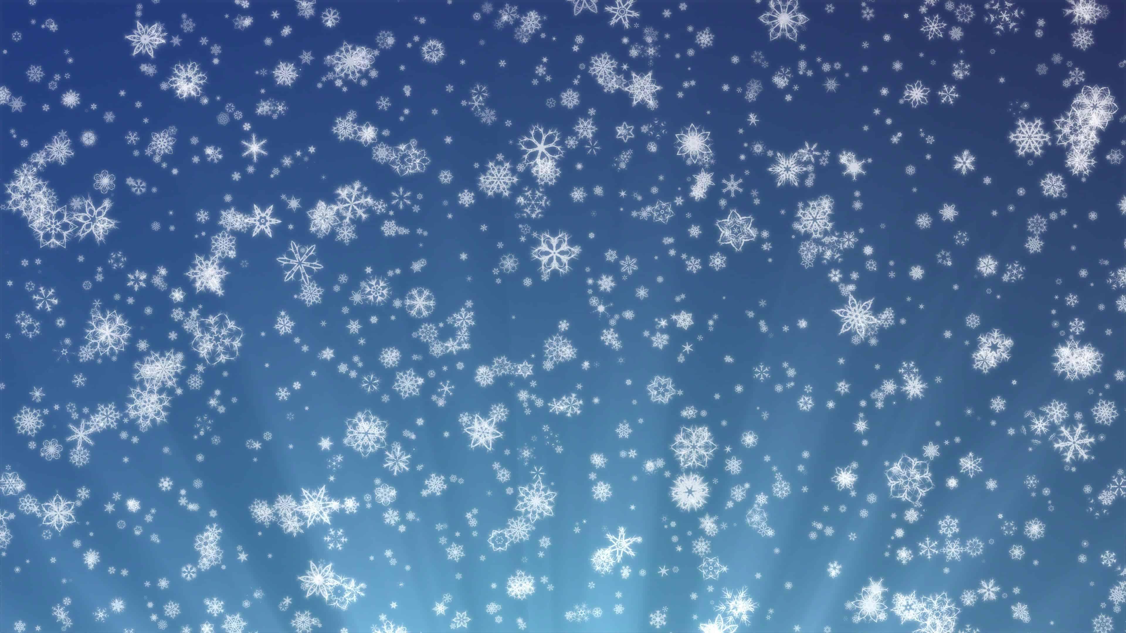 Free Falling Snow Wallpaper Snowflakes On A Blue Background Uhd 4k Wallpaper Pixelz