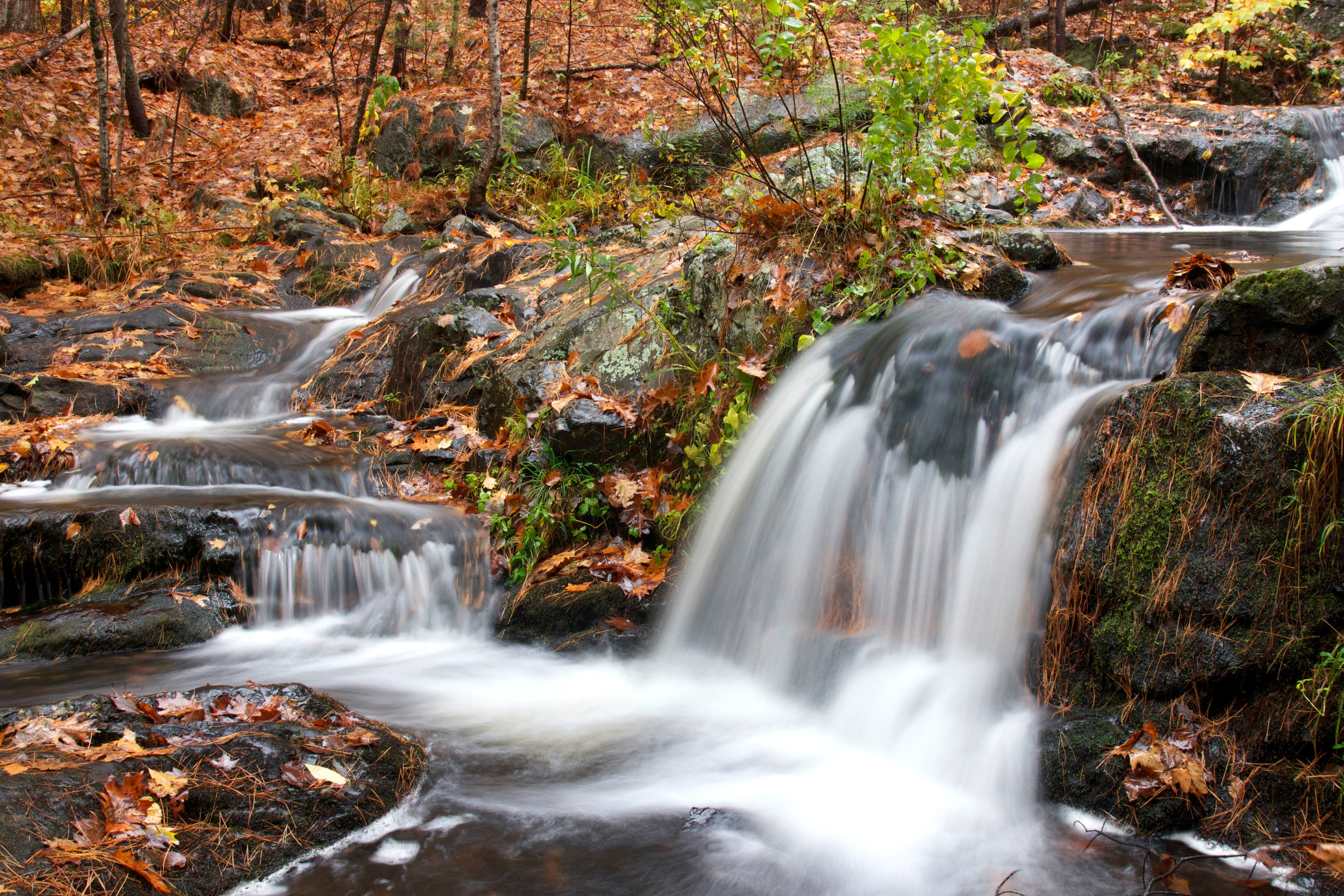 Nechar Wallpaper 3d Free Picture Small Waterfall Autumn Season Forest
