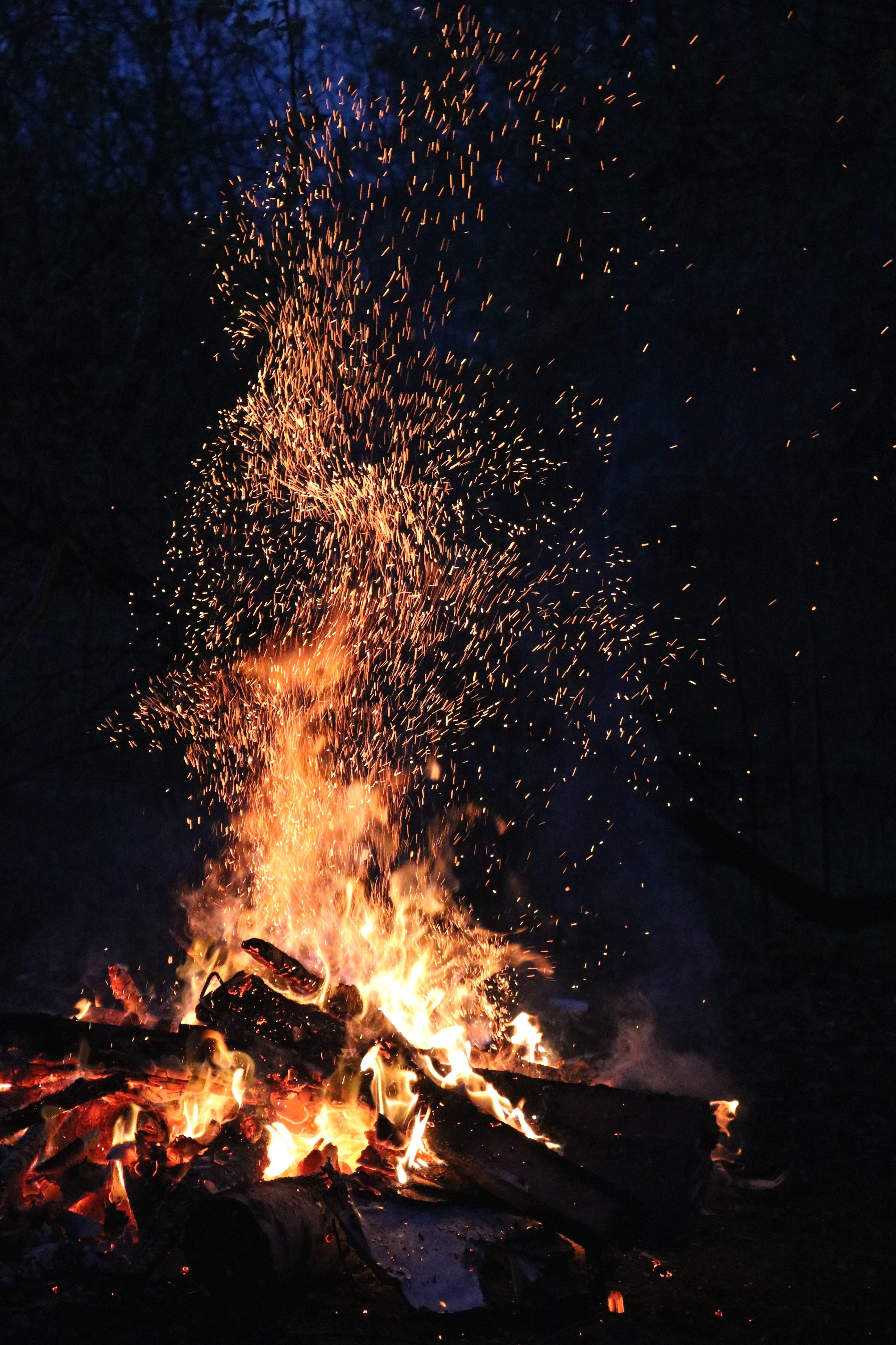 Wallpaper Hd Portrait Orientation Free Picture Fire Firewood Flame Forest Heat Hot