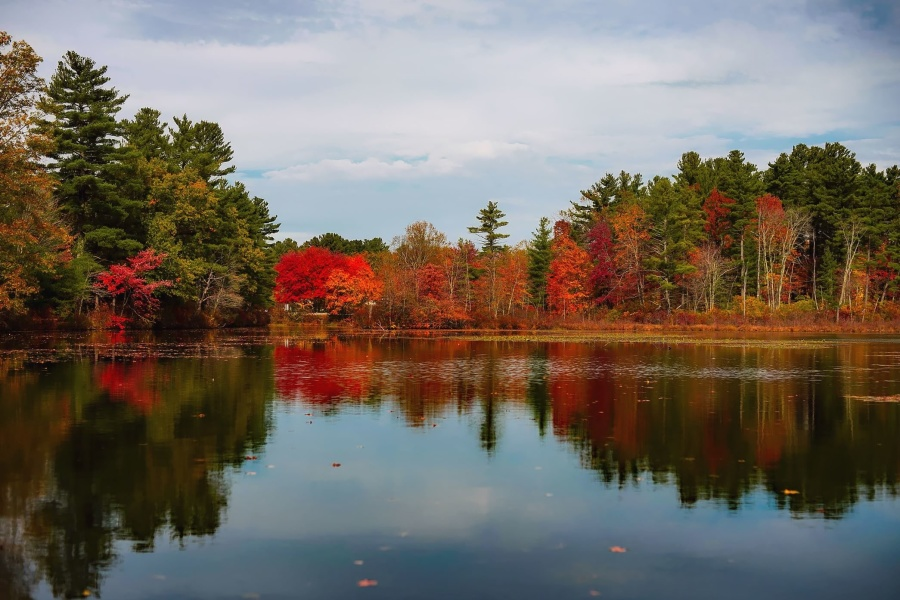 Free Country Fall Wallpaper Free Picture Forest River Sky Travel Tree Water