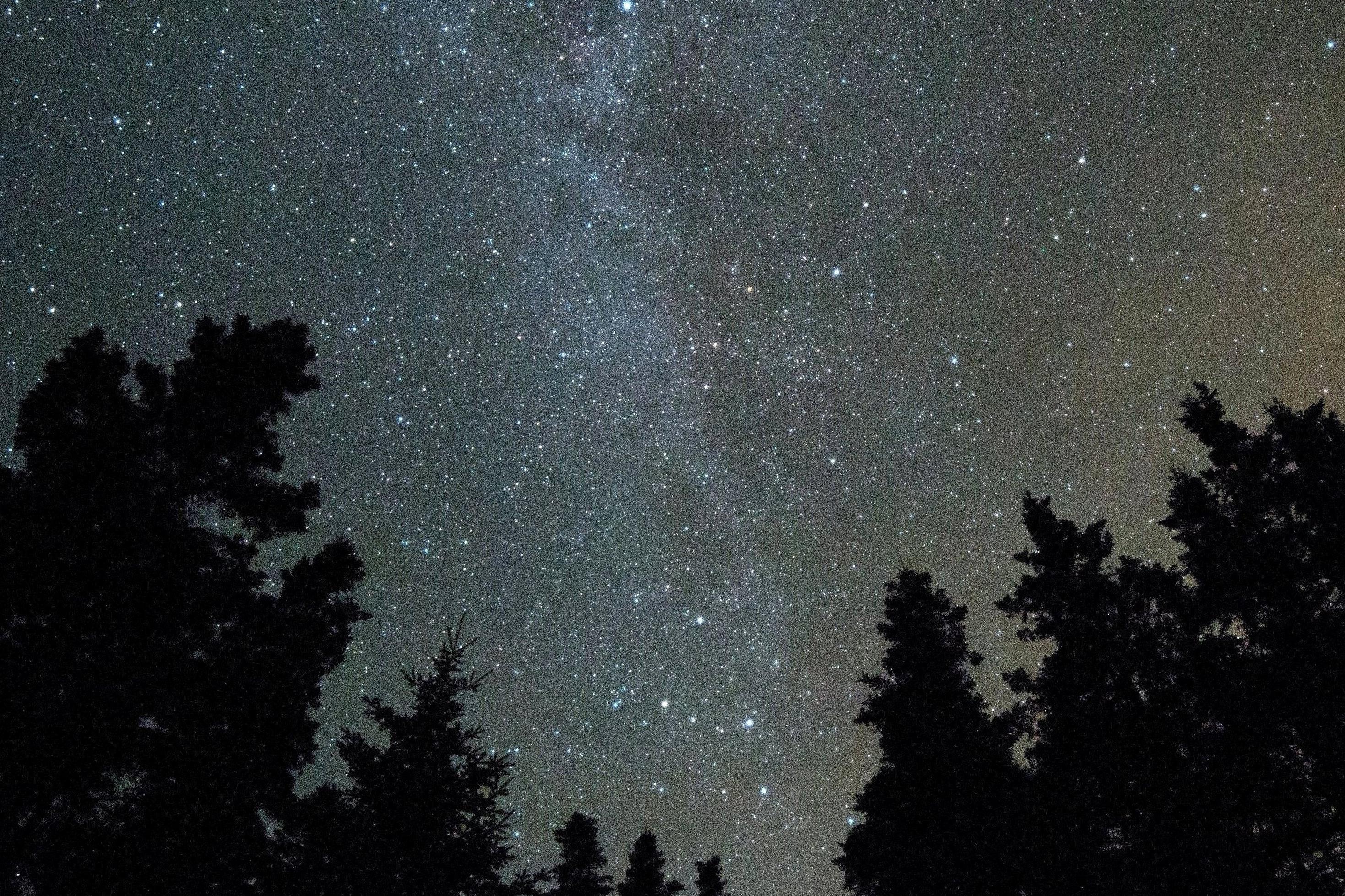 Minimalist Wallpaper Fall Free Picture Night Sky Dark Forest Stars