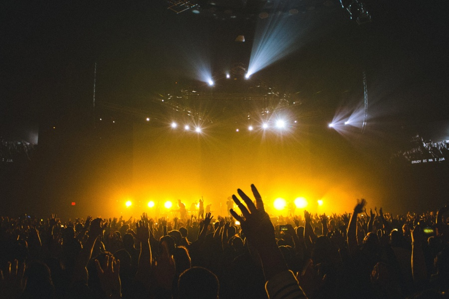 Animal Photo Wallpaper Image Libre Foule Concert De Rock Personnes Nuit Musique