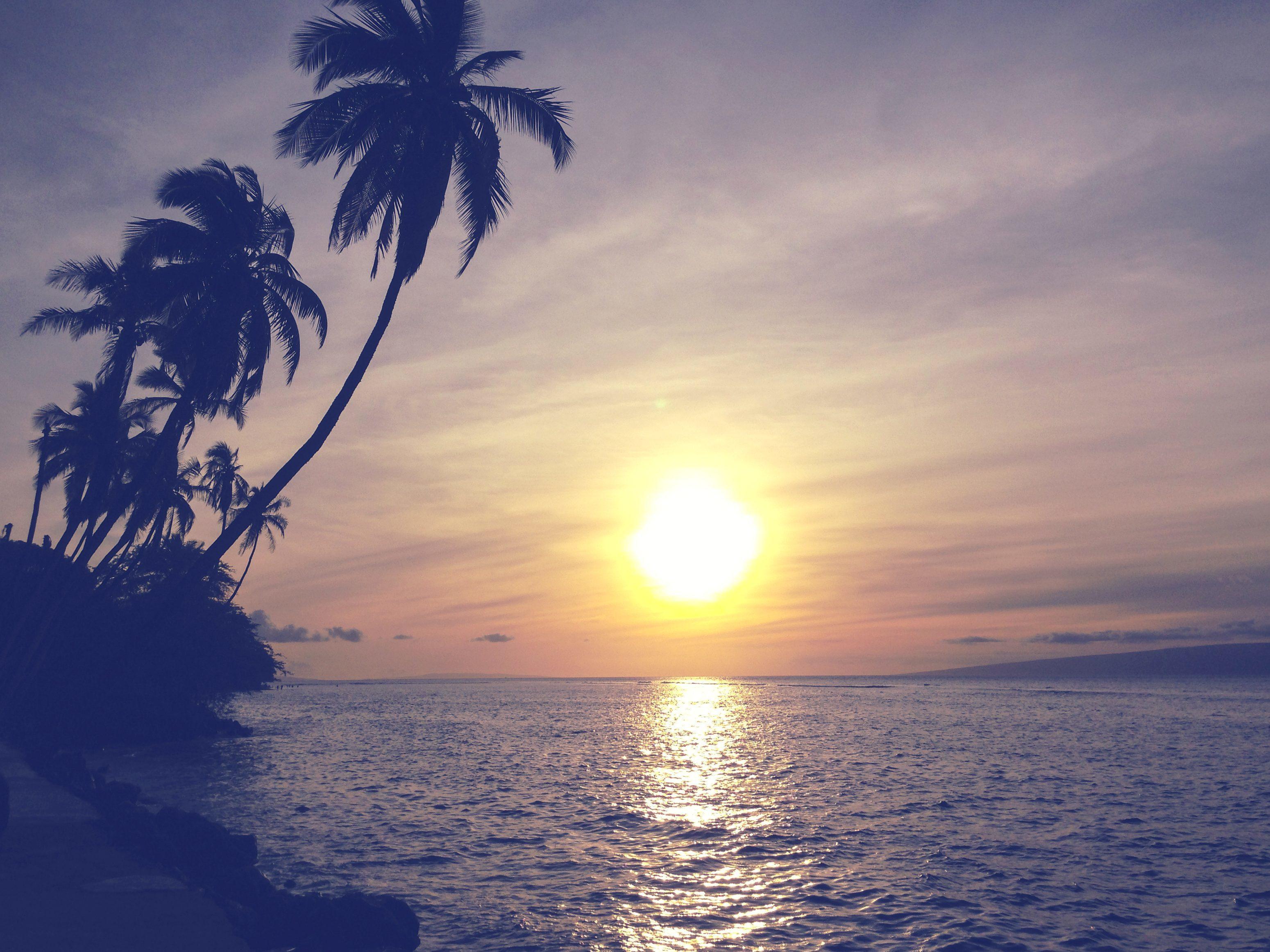 light island