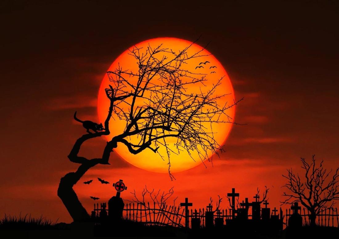Fall Sunset Wallpaper Imagen Gratis Fotomontaje Puesta De Sol Silueta