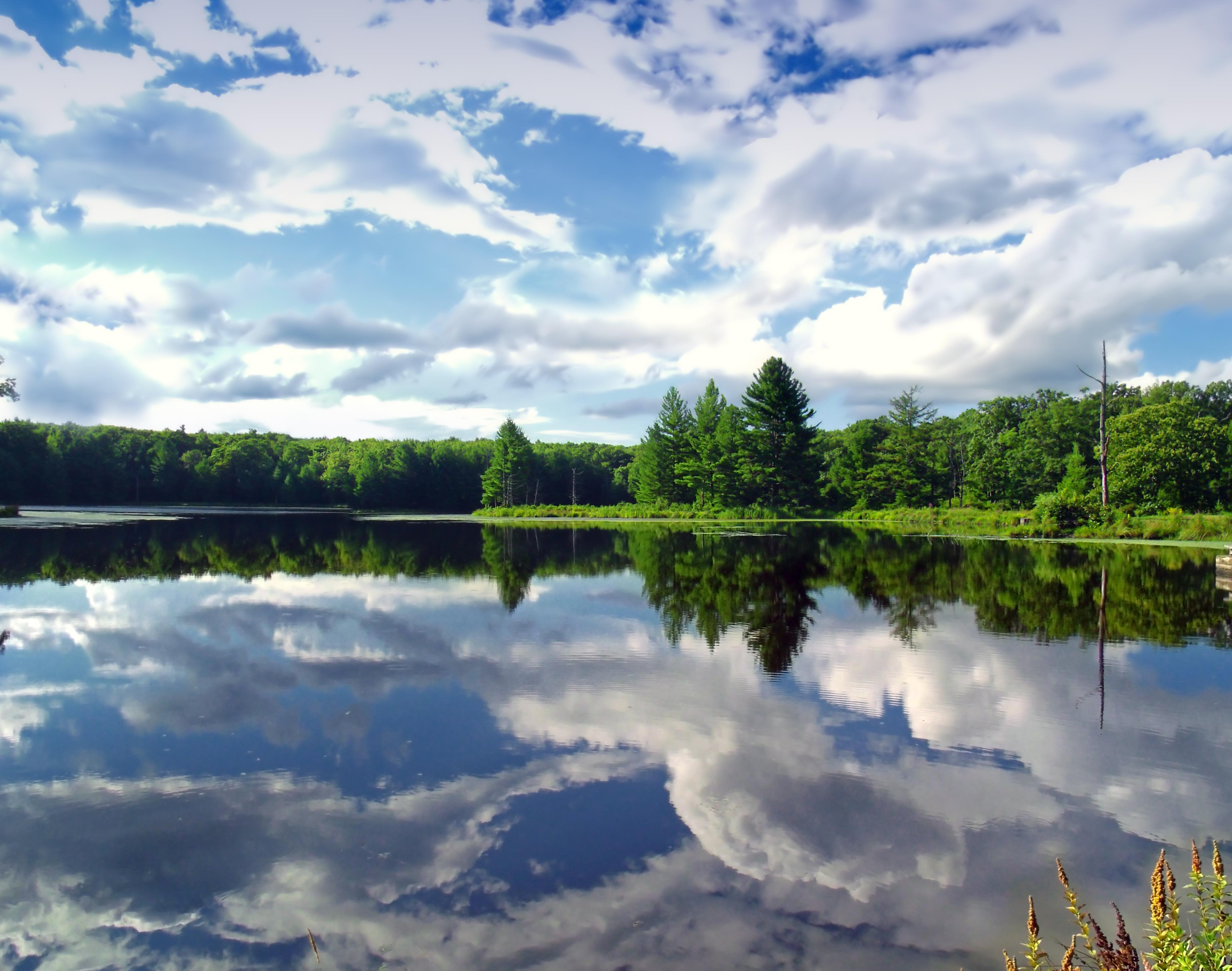 Hd Wallpaper Co Free Picture Water Landscape Lake Reflection Tree