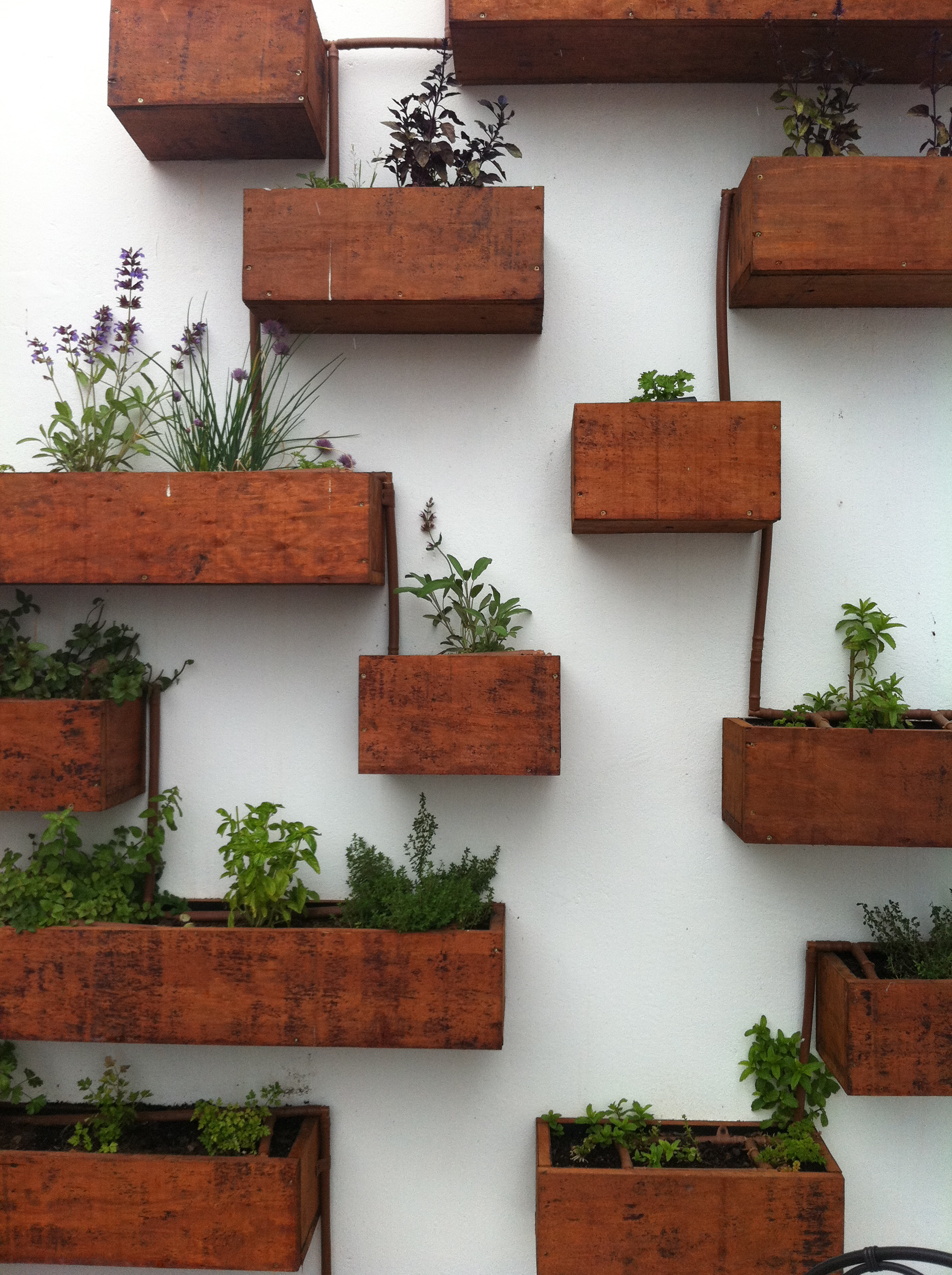 Large Wall Mounted Planters 19 Indoor Herb Planter Ideas Place To Call Home