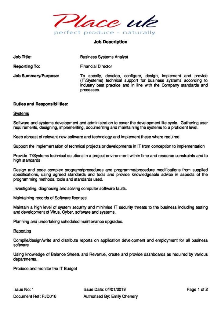 Business Systems Analyst Job Description - Place UK