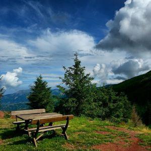 Stara Planina, leti