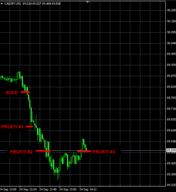 BEST FOREX SIGNALS CADJPY SEP24