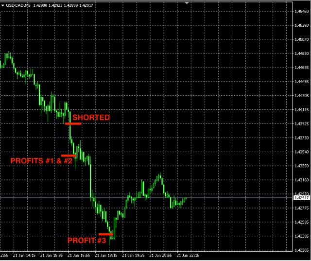 Best forex signals USDCAD jan21