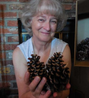 first big pine cone order