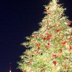クリスマスツリーなどの飾り付けを綺麗に魅せるテクニック