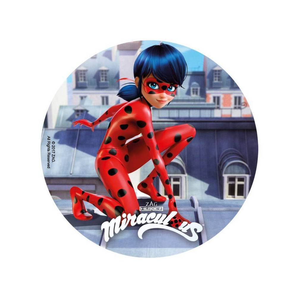 Vermicelle Decoration Gateau Disque En Sucre Ladybug Miraculous 20 Cm Cake Design Et