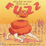 HOUSE OF THE RISING FUZZ – Compilation