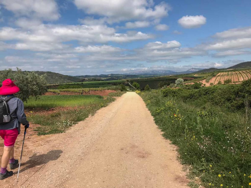 Camino Gas Natural Spain Camino 2 Highlights Of Another Grand Pilgrim Adventure