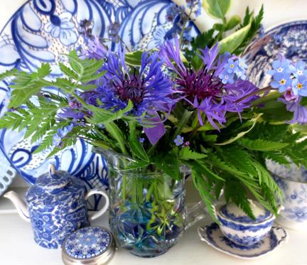 blue flowers Beautiful Blues