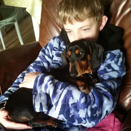Mini dachshund for Happy Friday